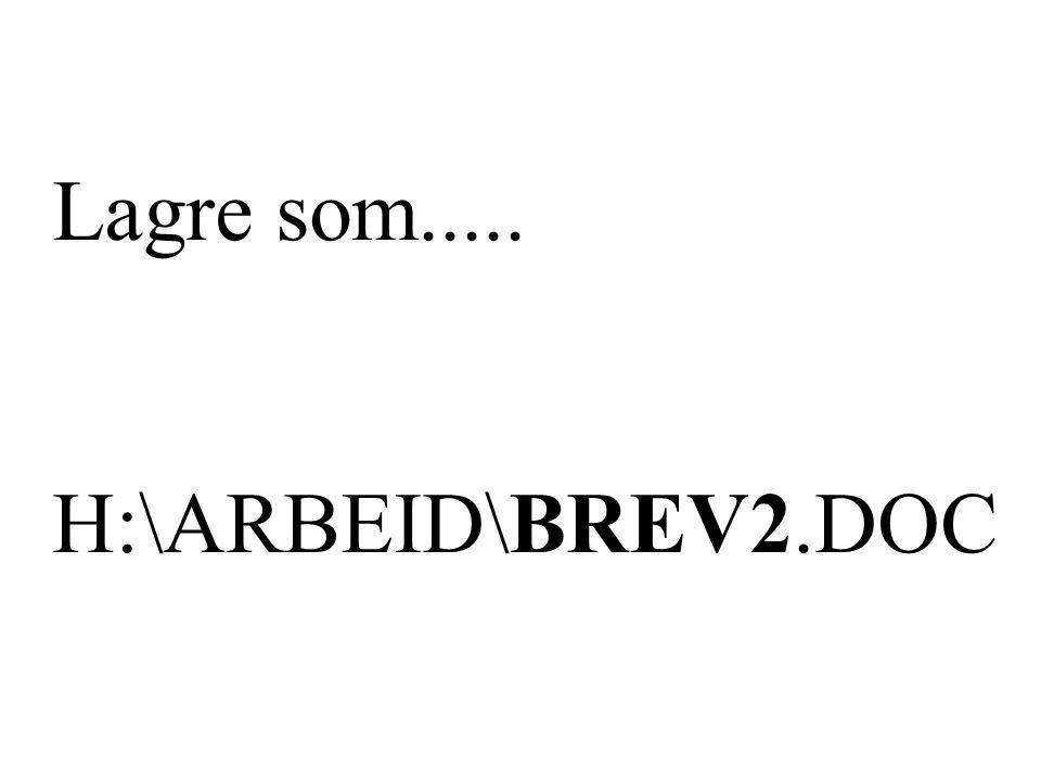 Lagre som..... H:\ARBEID\BREV2.DOC