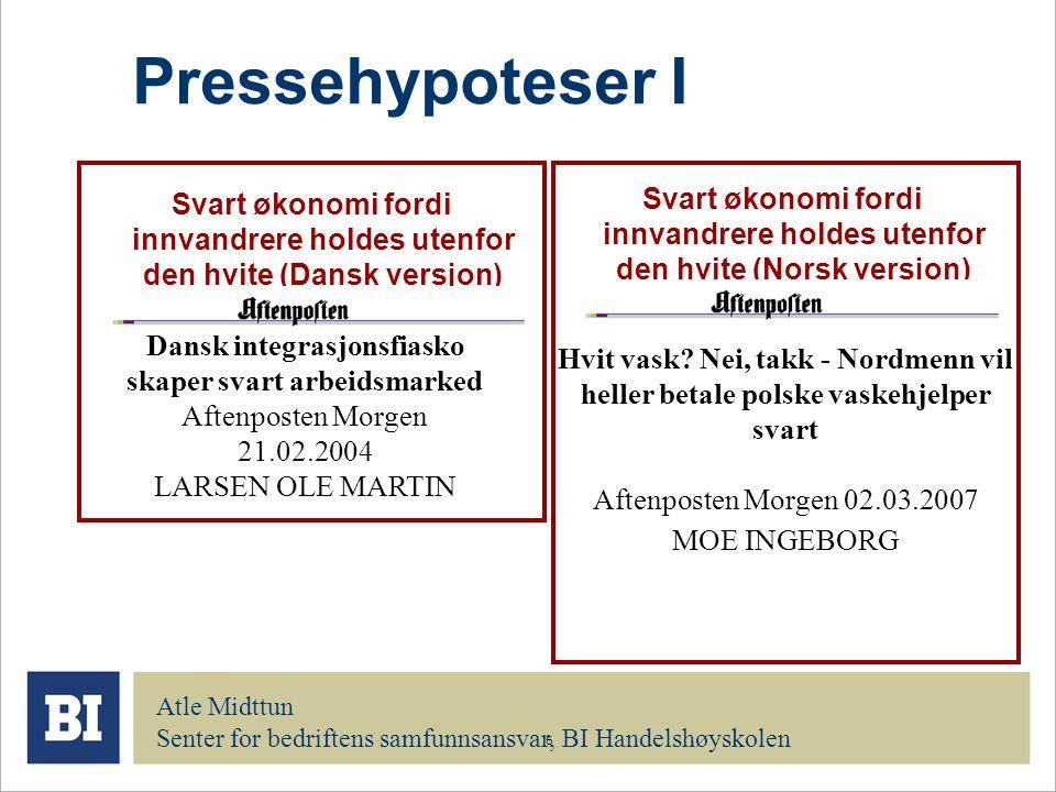 6 Pressehypoteser I Svart økonomi fordi innvandrere holdes utenfor den hvite (Dansk versjon) Dansk integrasjonsfiasko skaper svart arbeidsmarked Aften