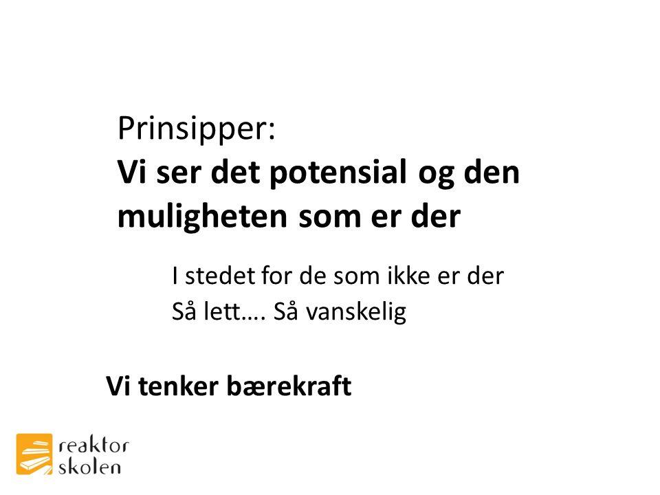 Prinsipper: Vi ser det potensial og den muligheten som er der I stedet for de som ikke er der Så lett….