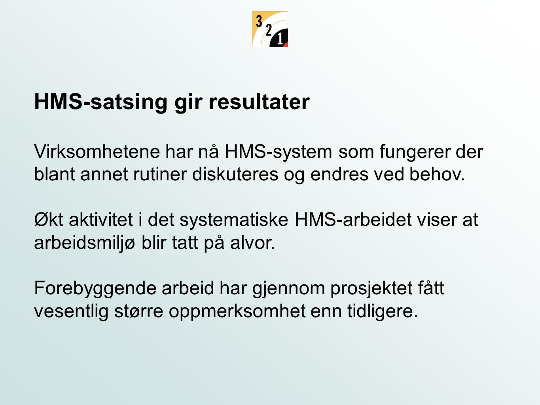Virksomhetene har nå HMS-system som fungerer der blant annet rutiner diskuteres og endres ved behov. Økt aktivitet i det systematiske HMS-arbeidet vis