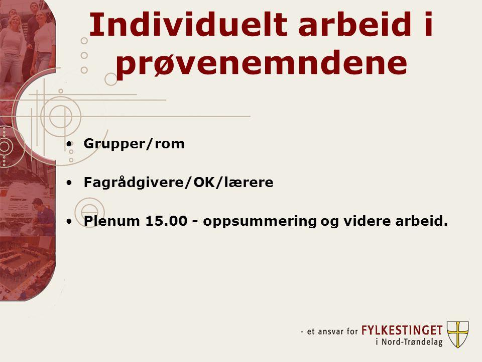 Individuelt arbeid i prøvenemndene •Grupper/rom •Fagrådgivere/OK/lærere •Plenum 15.00 - oppsummering og videre arbeid.