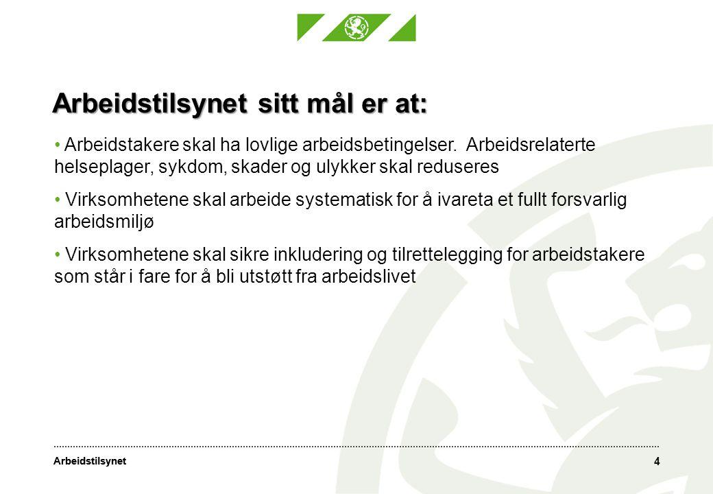 Arbeidstilsynet Virkemidler: Tilsyn som skal føre til en forbedring i virksomhetene.