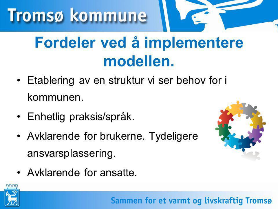 Fordeler ved å implementere modellen. •Etablering av en struktur vi ser behov for i kommunen. •Enhetlig praksis/språk. •Avklarende for brukerne. Tydel