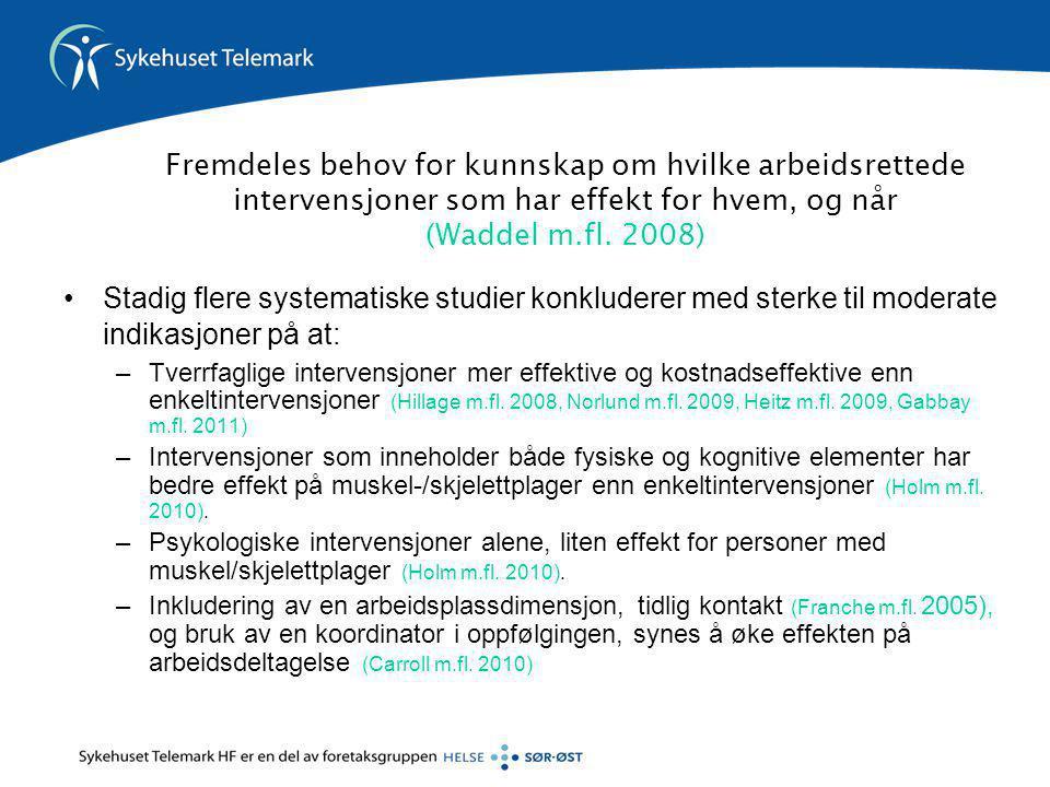 Fremdeles behov for kunnskap om hvilke arbeidsrettede intervensjoner som har effekt for hvem, og når (Waddel m.fl. 2008) •Stadig flere systematiske st