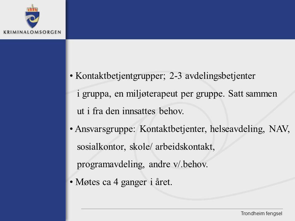 Trondheim fengsel • Kontaktbetjentgrupper; 2-3 avdelingsbetjenter i gruppa, en miljøterapeut per gruppe. Satt sammen ut i fra den innsattes behov. • A