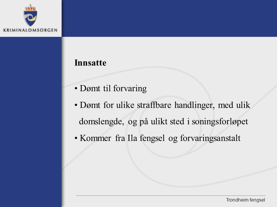 Trondheim fengsel Innsatte • Dømt til forvaring • Dømt for ulike straffbare handlinger, med ulik domslengde, og på ulikt sted i soningsforløpet • Komm