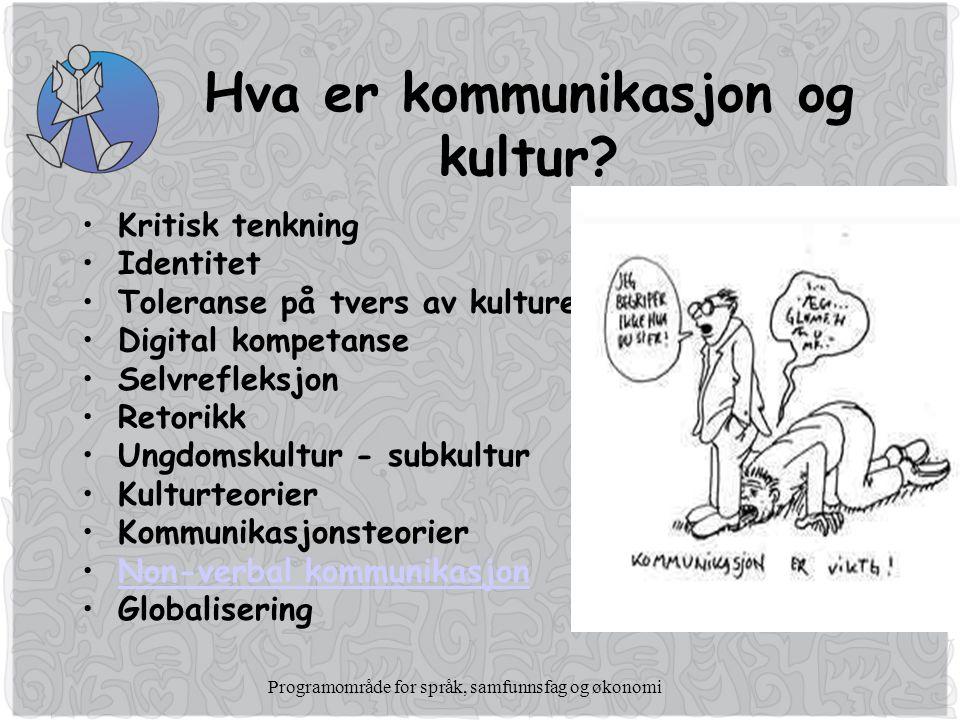 Programområde for språk, samfunnsfag og økonomi Hva er kommunikasjon og kultur.