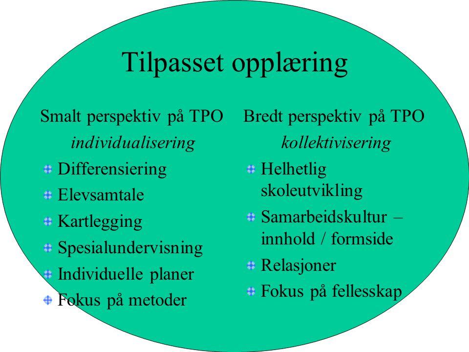 Tilpasset opplæring Smalt perspektiv på TPO individualisering Differensiering Elevsamtale Kartlegging Spesialundervisning Individuelle planer Fokus på