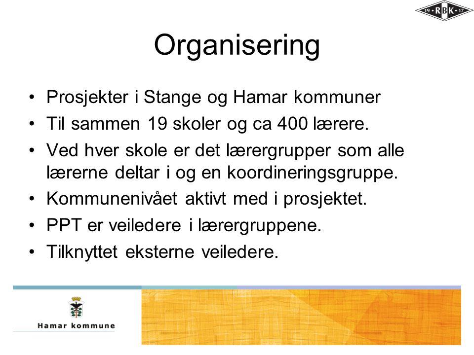 Organisering •Prosjekter i Stange og Hamar kommuner •Til sammen 19 skoler og ca 400 lærere. •Ved hver skole er det lærergrupper som alle lærerne delta