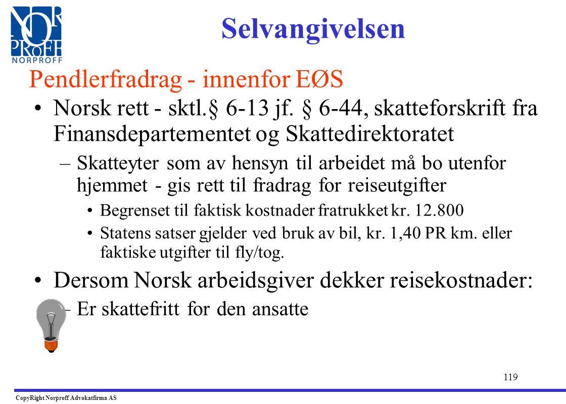 118 •Begrenset skatteplikt til Norge: –Inntekter som skal oppgis: •Spesifikke inntekter og kostnader skal med. •Skattyter bør dokumentere begrenset sk