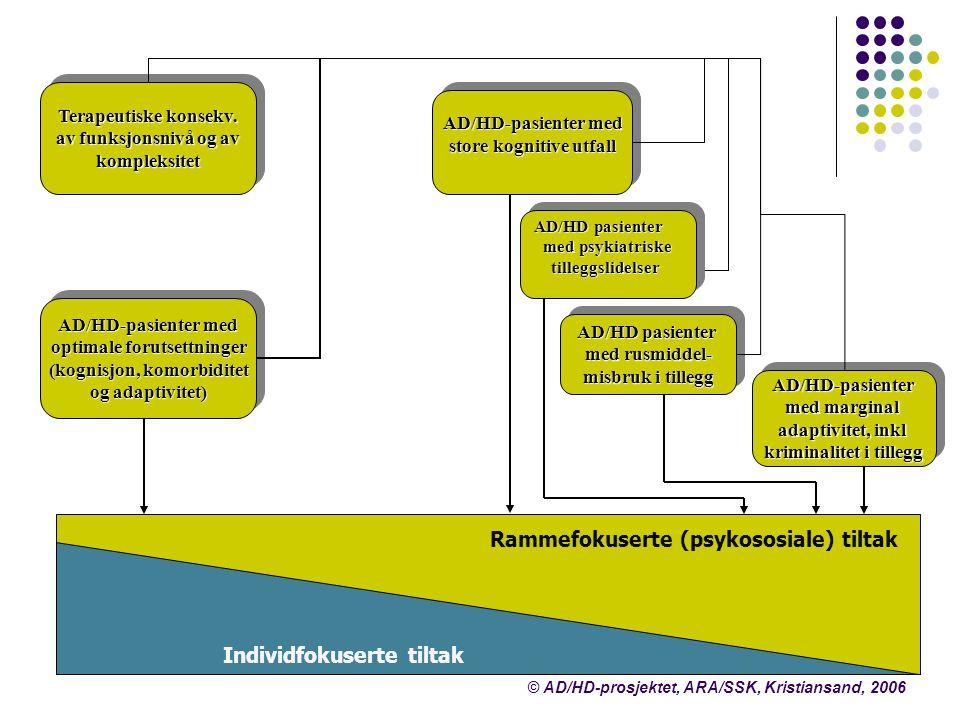 Terapeutiske konsekv. av funksjonsnivå og av kompleksitet Terapeutiske konsekv. av funksjonsnivå og av kompleksitet Individfokuserte tiltak Rammefokus