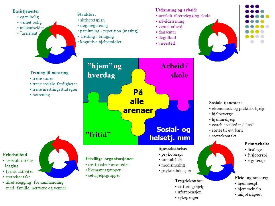 Terapeutiske konsekv.av funksjonsnivå og av kompleksitet Terapeutiske konsekv.