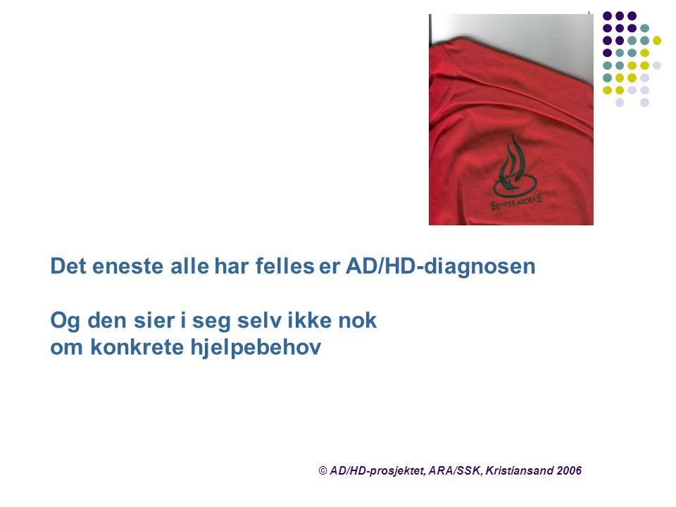 © AD/HD-prosjektet, ARA/SSK, Kristiansand 2006 Det eneste alle har felles er AD/HD-diagnosen Og den sier i seg selv ikke nok om konkrete hjelpebehov