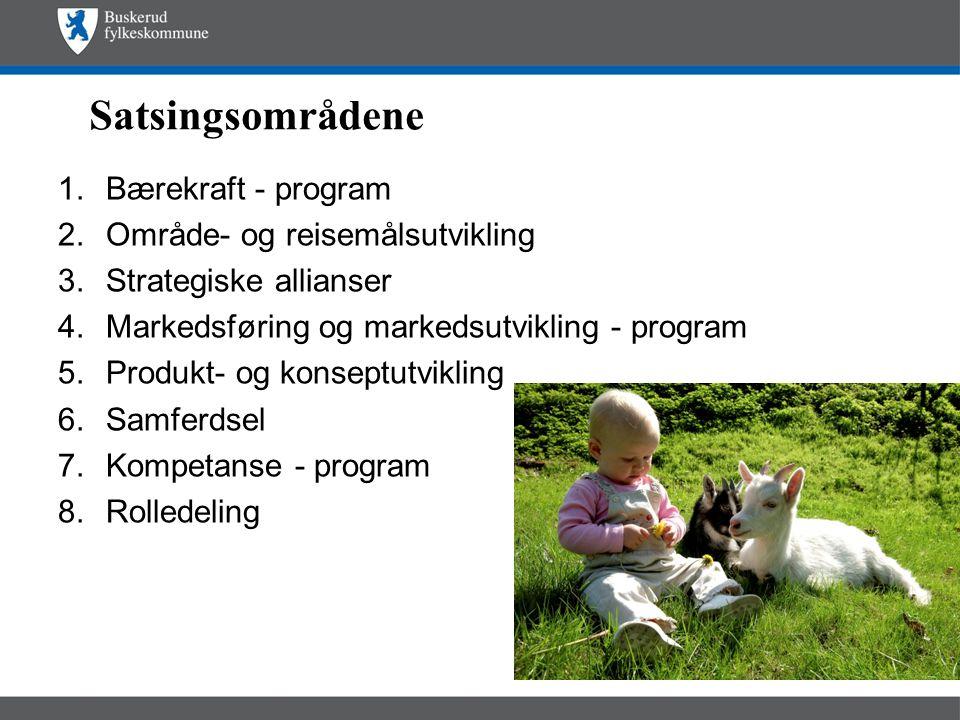 Satsingsområdene 1.Bærekraft - program 2.Område- og reisemålsutvikling 3.Strategiske allianser 4.Markedsføring og markedsutvikling - program 5.Produkt- og konseptutvikling 6.Samferdsel 7.Kompetanse - program 8.Rolledeling