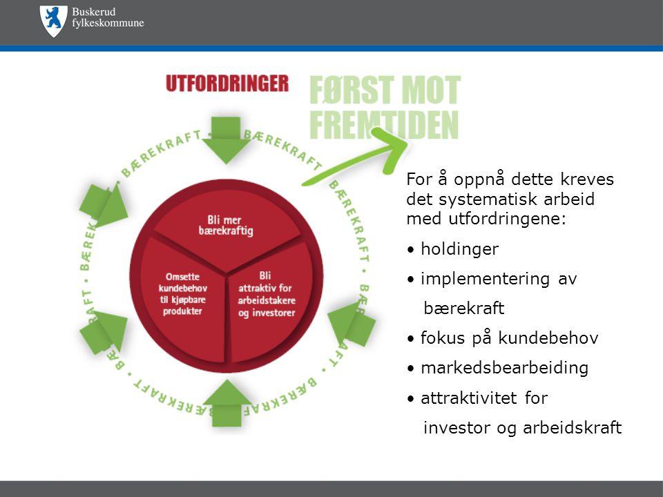 For å oppnå dette kreves det systematisk arbeid med utfordringene: • holdinger • implementering av bærekraft • fokus på kundebehov • markedsbearbeiding • attraktivitet for investor og arbeidskraft