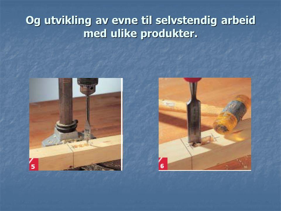 Og utvikling av evne til selvstendig arbeid med ulike produkter.