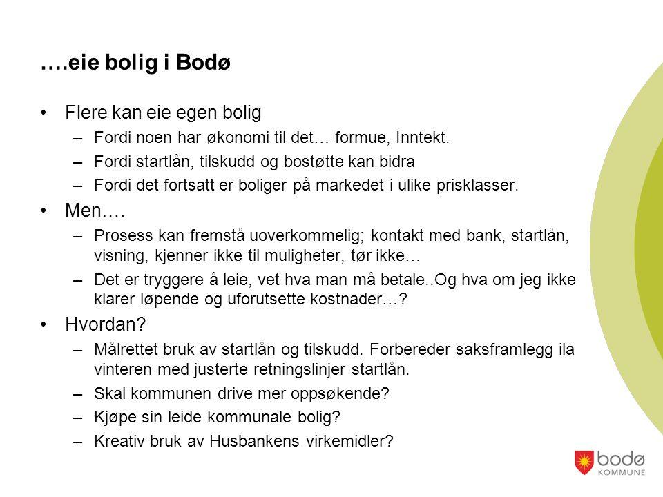 ….eie bolig i Bodø •Flere kan eie egen bolig –Fordi noen har økonomi til det… formue, Inntekt.