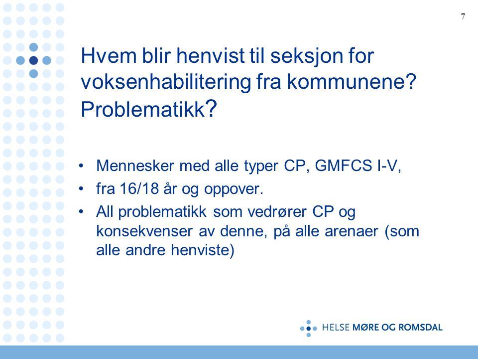 28 Hva er vårt (sam)arbeide og ansvar i forhold til voksen med CP? Hvordan samarbeide?