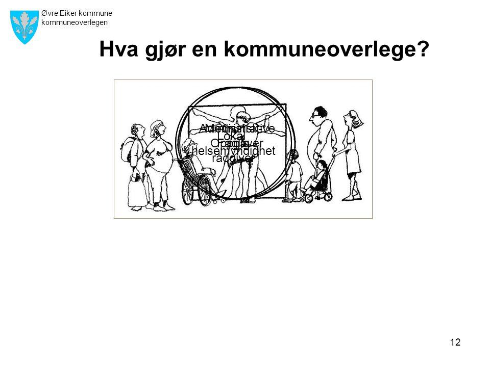 Øvre Eiker kommune kommuneoverlegen 12 Hva gjør en kommuneoverlege.