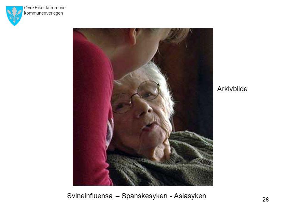 Øvre Eiker kommune kommuneoverlegen 28 Arkivbilde Svineinfluensa – Spanskesyken - Asiasyken