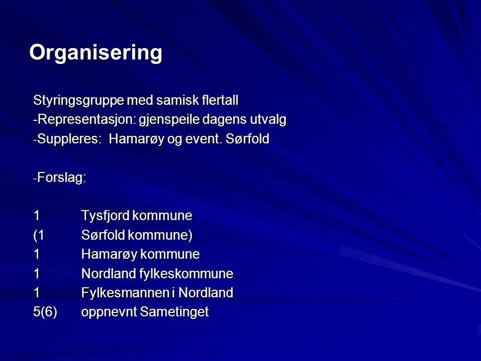 Organisering Styringsgruppe med samisk flertall -Representasjon: gjenspeile dagens utvalg - Suppleres: Hamarøy og event. Sørfold - Forslag: 1Tysfjord