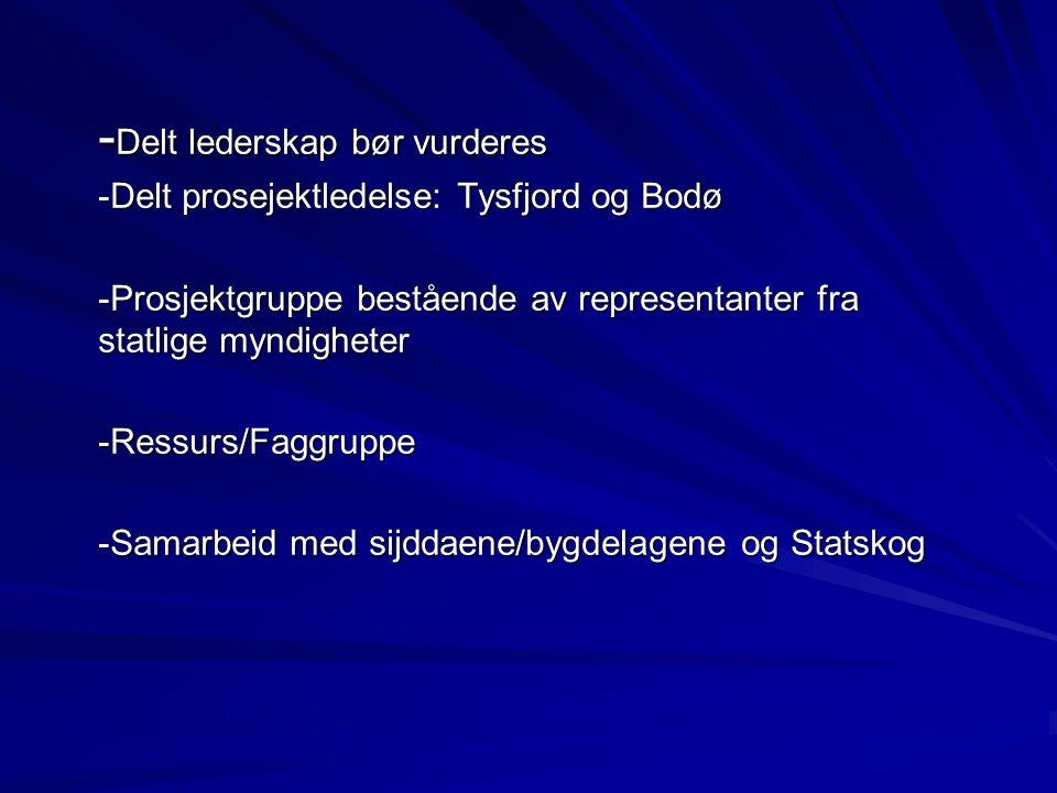 - Delt lederskap bør vurderes -Delt prosejektledelse: Tysfjord og Bodø -Prosjektgruppe bestående av representanter fra statlige myndigheter -Ressurs/F
