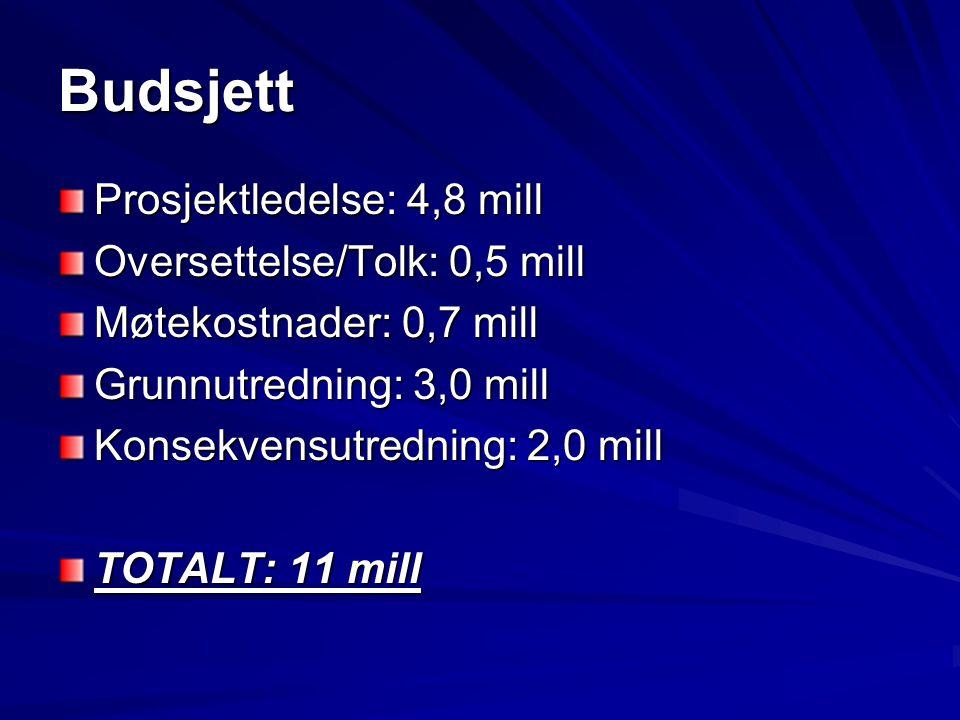 Budsjett Prosjektledelse: 4,8 mill Oversettelse/Tolk: 0,5 mill Møtekostnader: 0,7 mill Grunnutredning: 3,0 mill Konsekvensutredning: 2,0 mill TOTALT:
