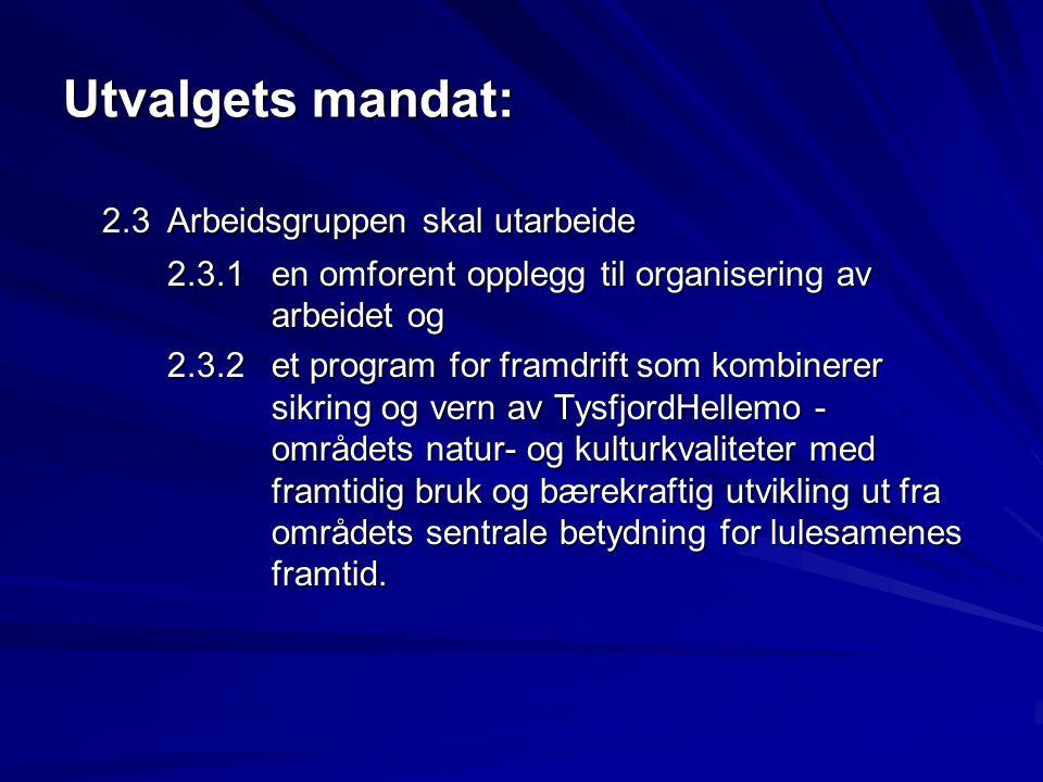 Utvalgets mandat: 2.3 Arbeidsgruppen skal utarbeide 2.3.1en omforent opplegg til organisering av arbeidet og 2.3.2et program for framdrift som kombine
