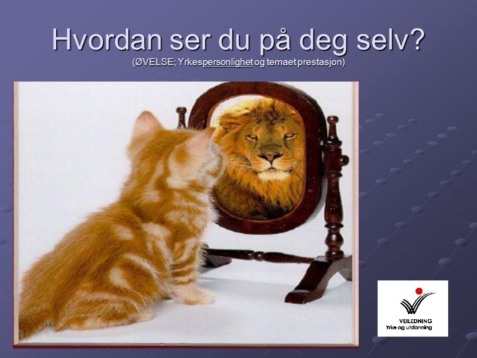 Hvordan ser du på deg selv? (ØVELSE; Yrkespersonlighet og temaet prestasjon)