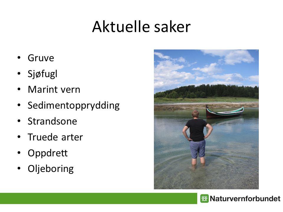 Aktuelle saker • Gruve • Sjøfugl • Marint vern • Sedimentopprydding • Strandsone • Truede arter • Oppdrett • Oljeboring