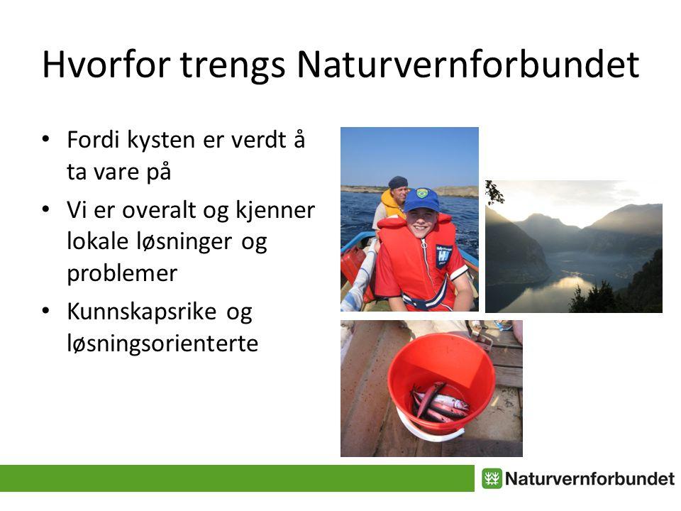 Hvorfor trengs Naturvernforbundet • Fordi kysten er verdt å ta vare på • Vi er overalt og kjenner lokale løsninger og problemer • Kunnskapsrike og løsningsorienterte
