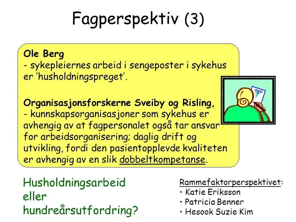 Fagperspektiv (3) Ole Berg - sykepleiernes arbeid i sengeposter i sykehus er 'husholdningspreget'. Organisasjonsforskerne Sveiby og Risling, - kunnska