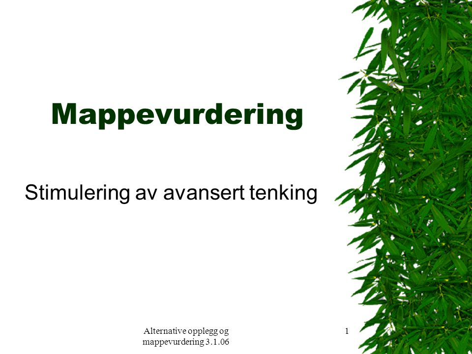 Alternative opplegg og mappevurdering 3.1.06 1 Mappevurdering Stimulering av avansert tenking