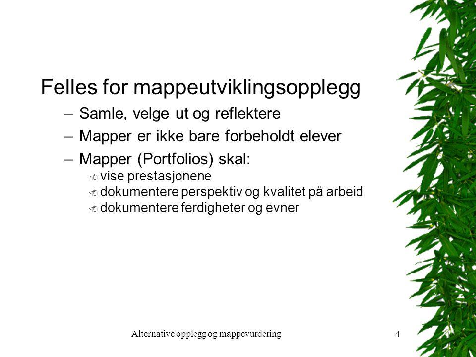Alternative opplegg og mappevurdering4 Felles for mappeutviklingsopplegg –Samle, velge ut og reflektere –Mapper er ikke bare forbeholdt elever –Mapper (Portfolios) skal:  vise prestasjonene  dokumentere perspektiv og kvalitet på arbeid  dokumentere ferdigheter og evner
