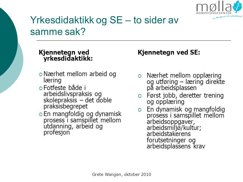Grete Wangen, oktober 2010 Yrkesdidaktikk og SE – to sider av samme sak.