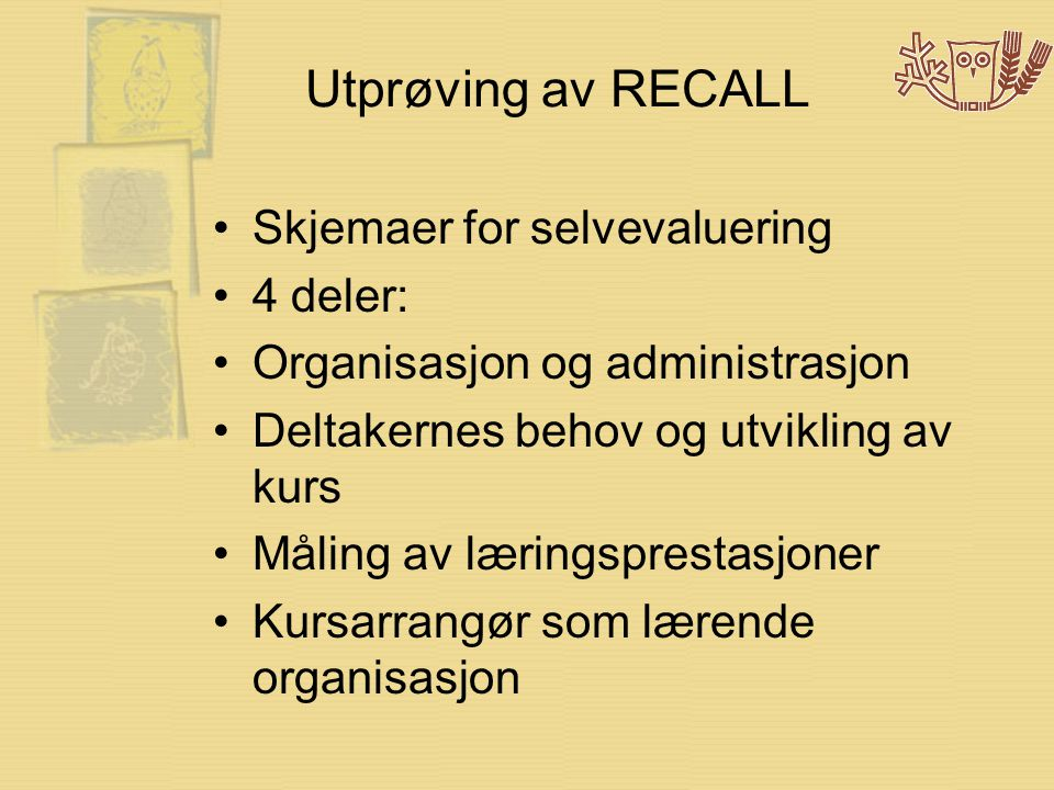 Utprøving av RECALL •Skjemaer for selvevaluering •4 deler: •Organisasjon og administrasjon •Deltakernes behov og utvikling av kurs •Måling av læringsprestasjoner •Kursarrangør som lærende organisasjon