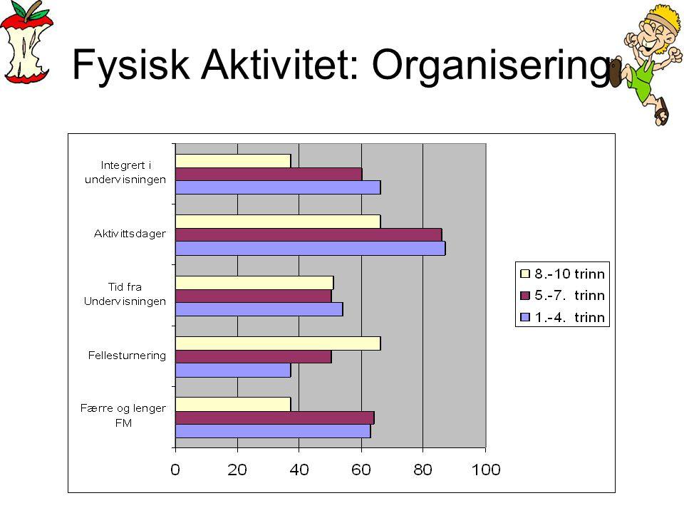 Fysisk Aktivitet: Organisering