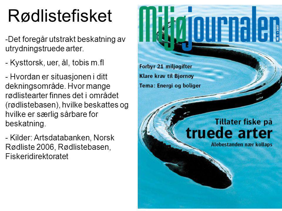 Rødlistefisket -Det foregår utstrakt beskatning av utrydningstruede arter.