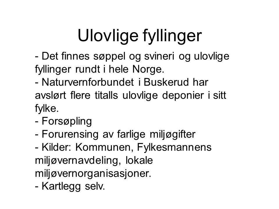Ulovlige fyllinger - Det finnes søppel og svineri og ulovlige fyllinger rundt i hele Norge. - Naturvernforbundet i Buskerud har avslørt flere titalls