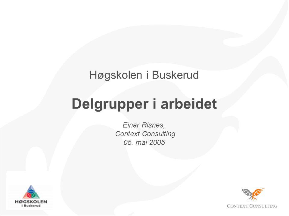 Høgskolen i Buskerud Delgrupper i arbeidet Einar Risnes, Context Consulting 05. mai 2005