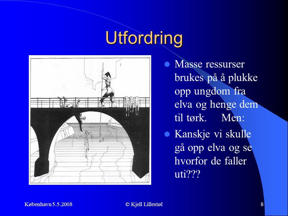 København 5.5.2008© Kjell Lillestøl8 Utfordring  Masse ressurser brukes på å plukke opp ungdom fra elva og henge dem til tørk. Men:  Kanskje vi skul
