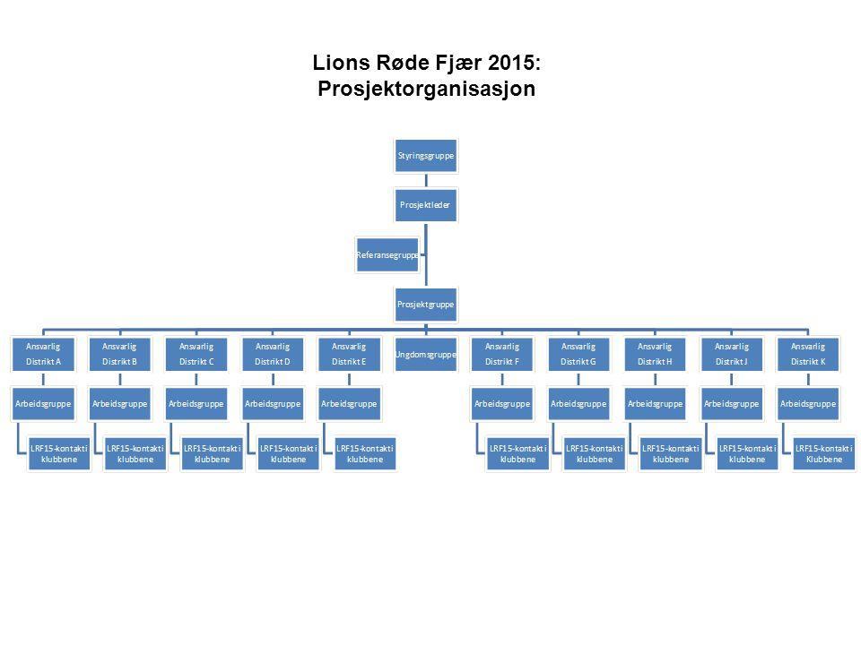 Lions Røde Fjær 2015: Prosjektorganisasjon
