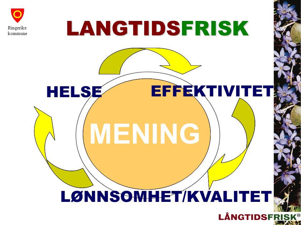 MENING HELSE EFFEKTIVITET LØNNSOMHET/KVALITET LANGTIDSFRISK Ringerike kommune