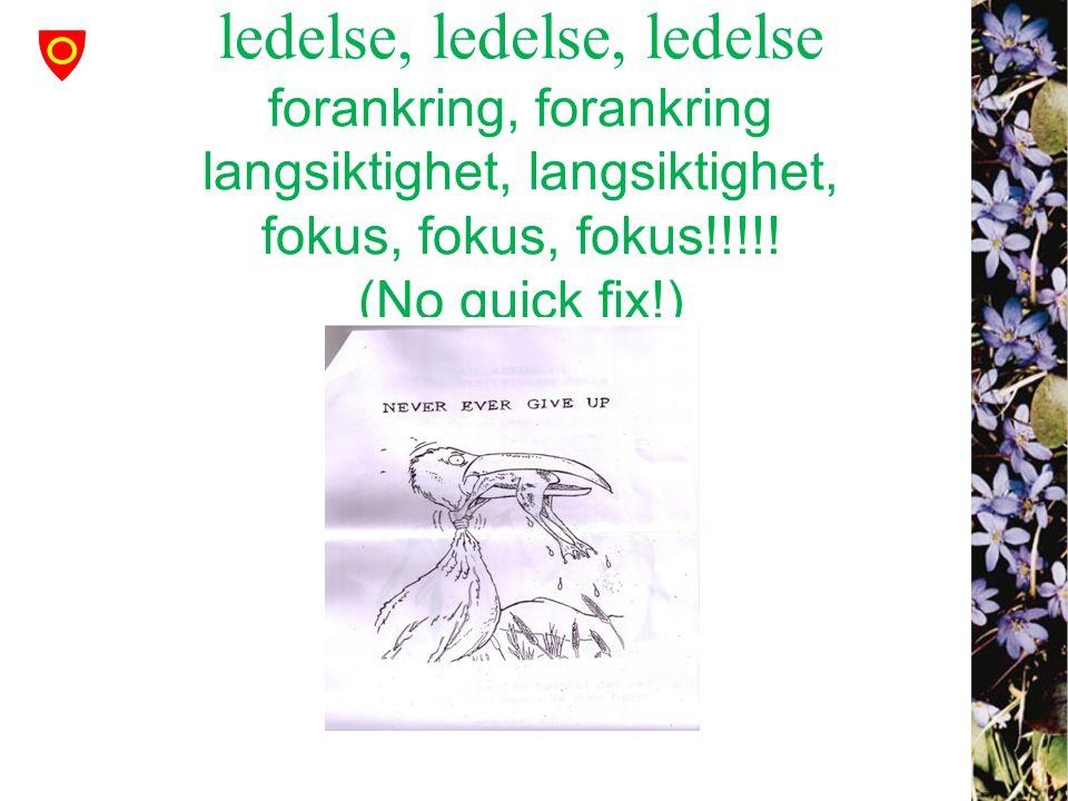 ledelse, ledelse, ledelse forankring, forankring langsiktighet, langsiktighet, fokus, fokus, fokus!!!!! (No quick fix!)