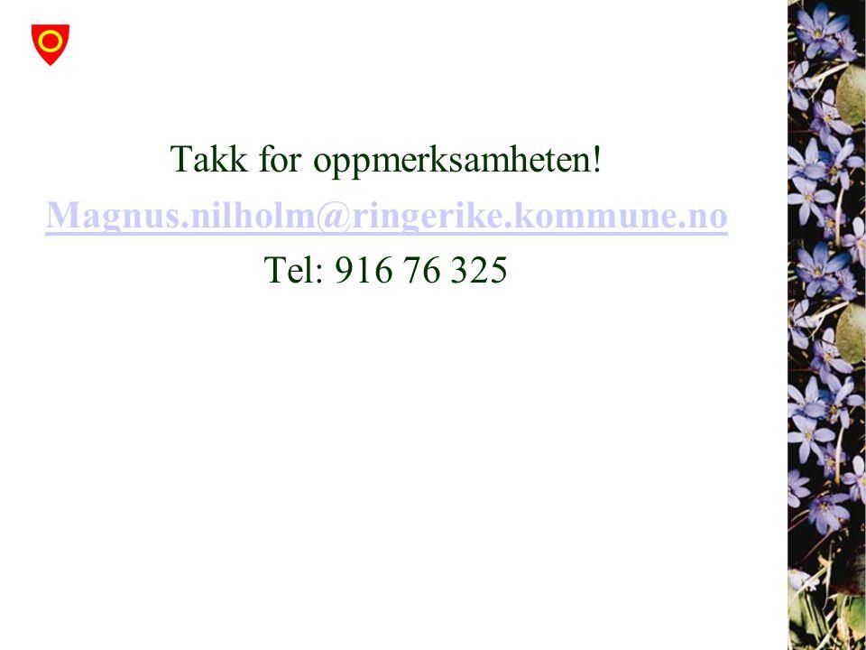 Takk for oppmerksamheten! Magnus.nilholm@ringerike.kommune.no Tel: 916 76 325