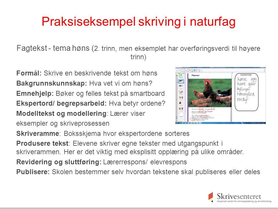 Praksiseksempel skriving i naturfag Fagtekst - tema høns ( 2.