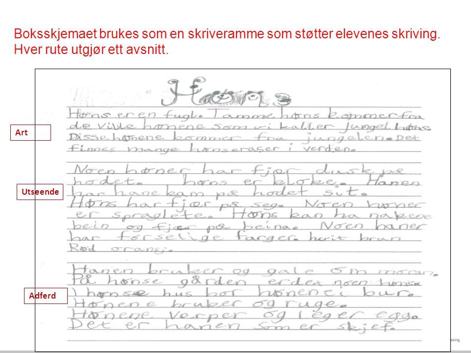 Boksskjemaet brukes som en skriveramme som støtter elevenes skriving.
