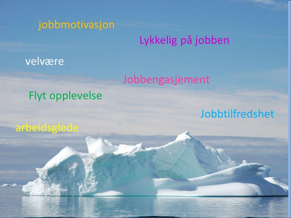 Jobbtilfredshet Flyt opplevelse Jobbengasjement Lykkelig på jobben arbeidsglede velvære jobbmotivasjon