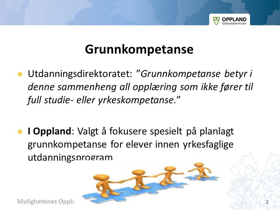 Mulighetenes Oppland 3 Mål for vårt arbeid i 2012:  OFK - FR-sak 40/12:  Delmål 2: Høy kvalitet på arbeidet med planlagt grunnkompetanse .