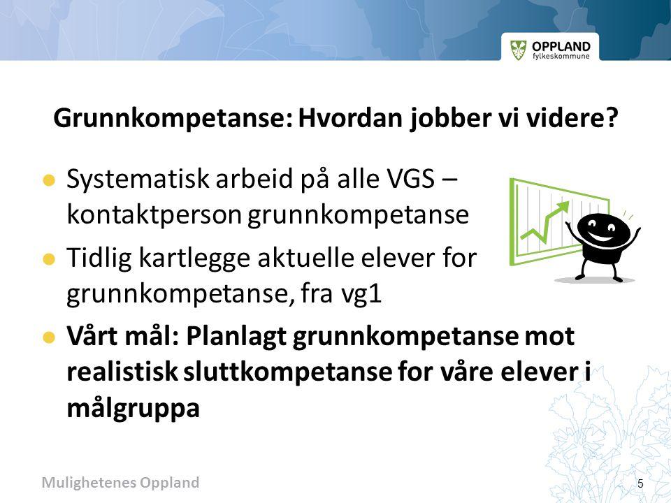 Mulighetenes Oppland Videre arbeid for å kartlegge/formidle aktuelle lærekandidater  Pr.